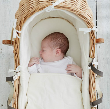 baby fast asleep in a moses basket